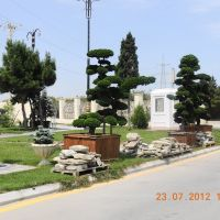 Магазин Almet Garden, Бузовна