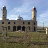 Fuzuli rayonu Ehmedalilar kend Mescidi, Горадиз