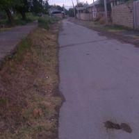 Kanal (Arx) Vüsalın dükanı, Имишли