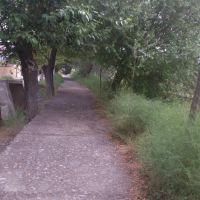 Kanal (Arx), Имишли