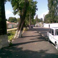 Ismailly-Bazar Street, Исмаиллы