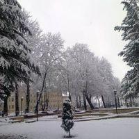 Центральный парк - январь месяц, Исмаиллы