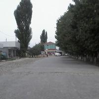 Hacı Zeynalabdin Tağıyev küçəsi, Ленкорань
