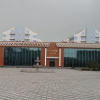 Heyder Eliyev Muzeyi, Ленкорань