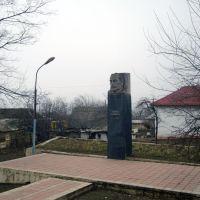 N.Narimanov monument, Лерик