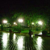 Mashtaga_park_autumn_rain, Маштага