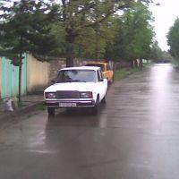 I. Qasimov kucesi, Тауз