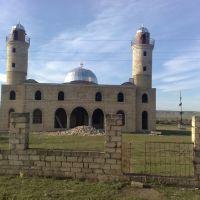 Fuzuli rayonu Ehmedalilar kend Mescidi, Физули