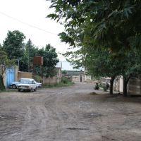 Yuxarı Könüllü kəndi, 1ci küçə, Шамхор