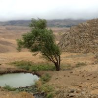 ياستي بولاق و روستاي مه آلود اسمعلي كندي  شهرستان گرمي  : MET, Биласувар