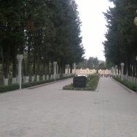 Agdash Heyder Aliyev parki 5, Агдаш