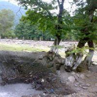 Çənlibel istirahət mərkəzi   N.F.B., Али-Байрамлы
