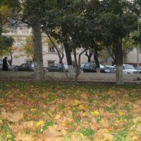 22.11.2007 Baku, Баку
