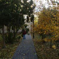 27.11.2011 Baku, Баку
