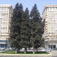 30.03.2008 Bakı, Баку