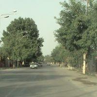 GOZAL BARDA, Барда