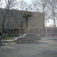 Heydər Əliyev Prospekti 21.03.2013, Барда