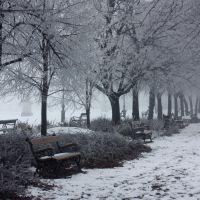 Téli némaság, Сольнок