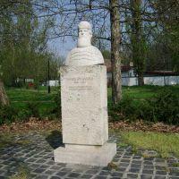 Kecskemét-Noszlopy Gáspár szobra, Кечкемет