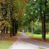 Jő az édes ősz ... ( Népkerti sétány ), Мишкольц