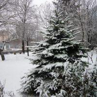 2011.03.03-i hóesés, Дунауйварош