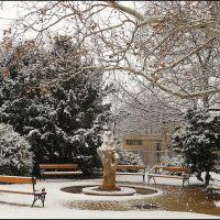Havas  mackó (Snowy bear), Дунауйварош