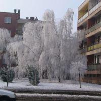 Dunaújvárosi tél 2, Дунауйварош