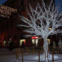 Boldog Karácsonyt Barátaim!  /Merry Christmas my friends!/, Дебрецен