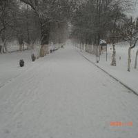 От парка к штабу, Куляб