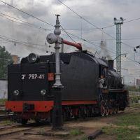 The Podmoskovnaya Railroad Depot, Лениградский