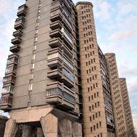 Неземная архитектура!, Лениградский