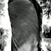 crisalide, Пяндж