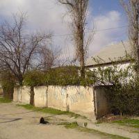 ул. Р.Набиев (246а) Мой дом :), Айни