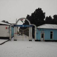 ВороТа Больница (аптека рядом)(автор;firuz_orifov@mail.ru), Ганчи