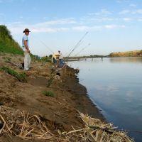 """На рыбалке, река """"Сырдарья"""" рядом с впадением """"Восточного"""", Зафарабад"""