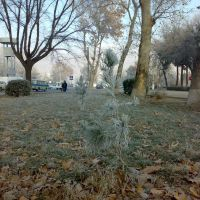 Frosty winter in Khujand - Морозная зима в Худжанде, Зафарабад
