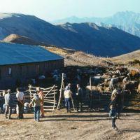 летовка в горах, Наугарзан