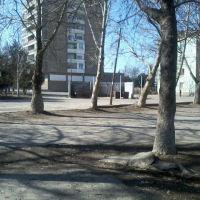 двор 9этажки, Чкаловск