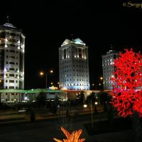 ©Burnin tree, Ашхабад