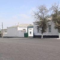 Бахарденская школа, Бахарден