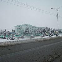 Зима, Бахарден