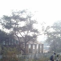 Mathura मथुरा மத்துரா- مہتھورا   మథుర- মথুরা- മഥുരാ- મથુરા-ਮਥੁਰਾ- ମଥୁରା-  မသူရာ-มทุรา-མཋུརཱ- マトゥラー - 마투라-马图拉- Матхура-Μαθύρα 201301197110., Дарваза