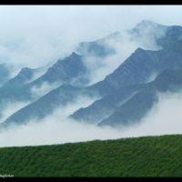 Foggy Mountain _ کوهستان در مه, Душак