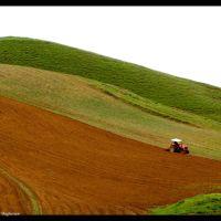 استفاده نادرست از منابع طبیعی؛ سدی در راه توسعه ی پایدار, Душак