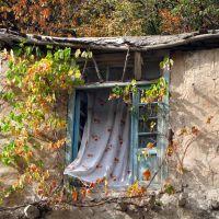 پنجره ای رو به پاییز, Душак