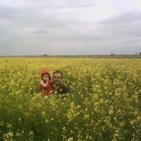 a Farm, Серахс