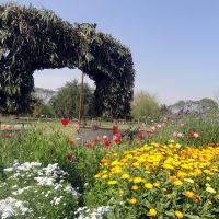 Swarn Jayanti Park, Smriti Vihar, Lucknow, Кара-Кала