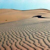 Каракумские пески в Репетекском заповеднике, Захмет