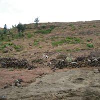 Sườn Đông Bắc chóp núi lửa Thới Lới, Кан-То