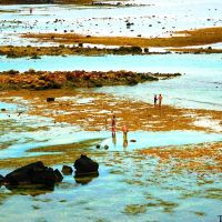 Bãi triều phía Bắc đảo Lý Sơn, Кан-То